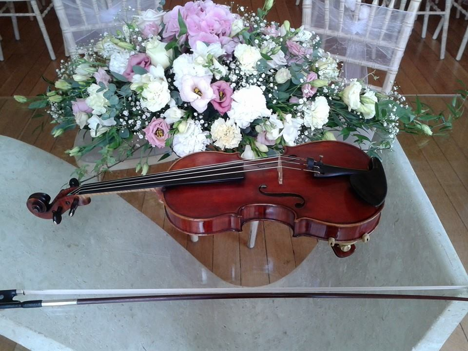 Sarah Loveridge - Solo Violinist for Weddings and events in